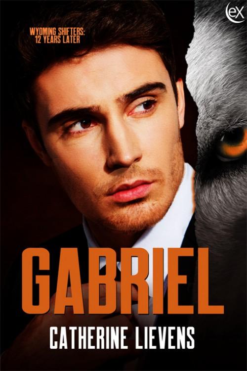 Gabriel510w-500x750